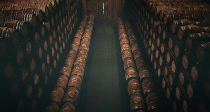 Einige Torres-Weine reifen im Fass