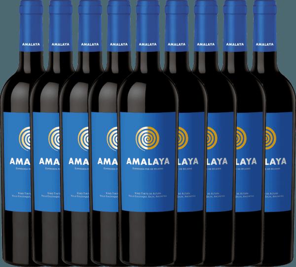 9er Vorteils-Weinpaket - Amalaya Tinto 2019 - Bodega Colomé