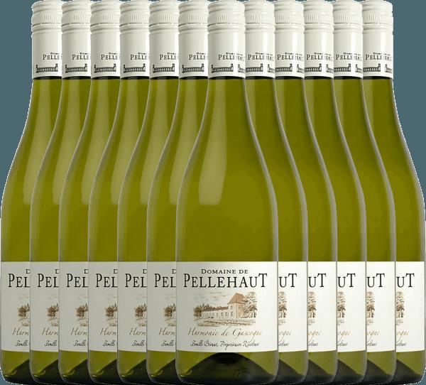 12er Vorteils-Weinpaket - Harmonie de Gascogne Blanc 2020 - Domaine de Pellehaut