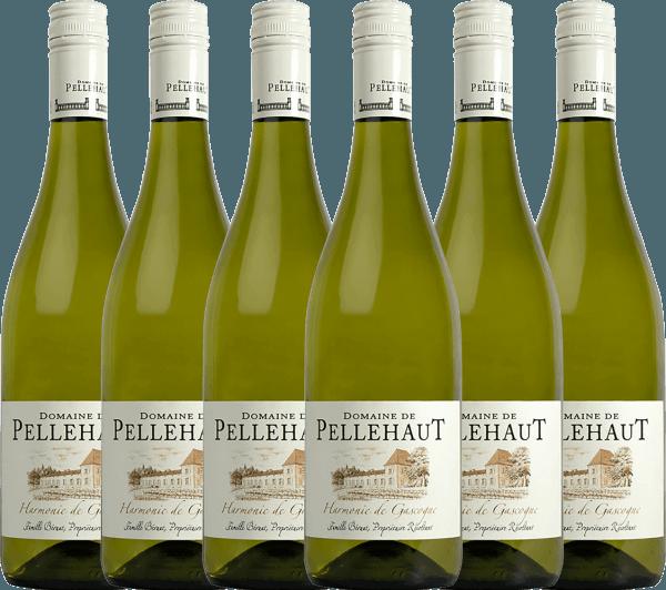 6er Vorteils-Weinpaket - Harmonie de Gascogne Blanc 2020 - Domaine de Pellehaut