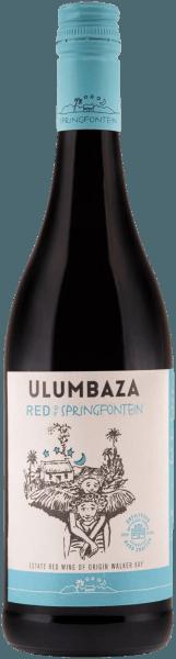 Ulumbaza Red Walker Bay WO 2017 - Springfontein
