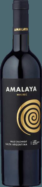 Valle Calchaquí Malbec 2020 - Bodega Amalaya