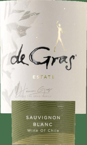 De Gras Sauvignon Blanc 2019 - Vina Montgras von Viña Montgras