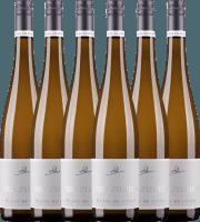6er Vorteils-Weinpaket - Blanc de Noirs eins zu eins 2020 - A. Diehl