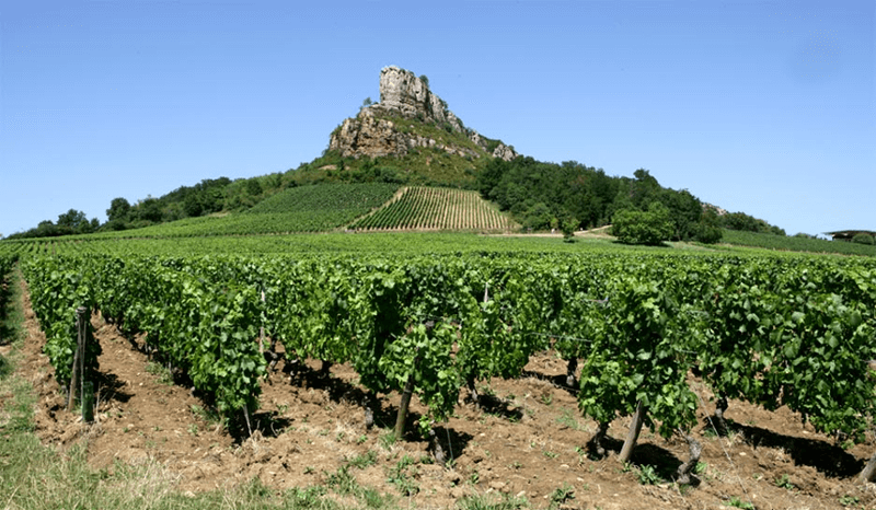 domaine-ferret-mountain