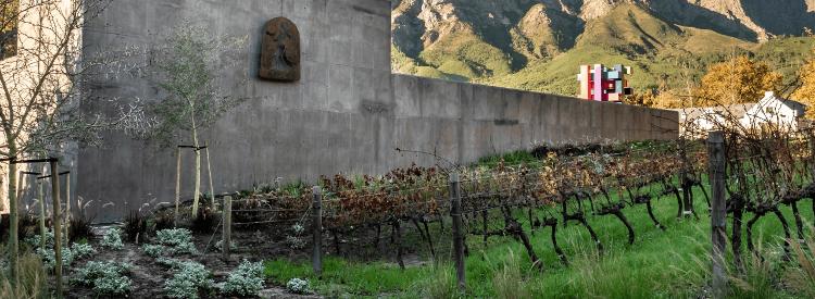 Der Weinkeller von Boekenhoutskloof