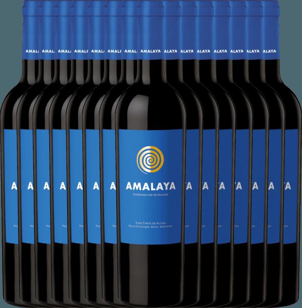 15er Vorteils-Weinpaket - Amalaya Tinto 2019 - Bodega Colomé