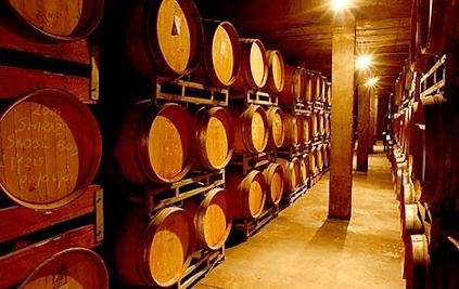 Im Weinkeller von Delheim