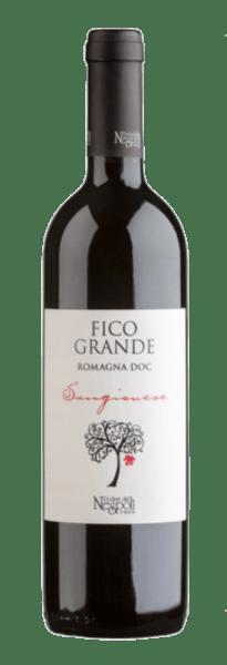 Der Fico Grande Sangiovese Romagna DOC von Poderi dal Nespoli leuchtet im Glas in einem intensive Rot mit violettem Schimmer. Dabei entfaltet sich das reichhaltige Bouquet dieses Sangiovese mit den Aromen von Kirschen und Veilchen. Dieser Rotwein begeistert am Gaumen mit seinem frischen und fruchtigen Geschmack und den feinen Tanninen. Dieser Sangiovese ist rein, echt und einfach zu trinken - der ideale Begleiter zu Speisen oder auch als Aperitif. Der Name des Fico Grande ist eine Hommage an den großen Feigenbaum, der einen der Weinberge der Familie Ravaioli beherrscht. Speiseempfehlung für den Fico Grande Sangiovese Genießen Sie diesen trockenen Rotwein zu Garganelli mit Kaninchensauce, gebratenem Fleisch und gegrilltem Hähnchen oder zu gereiftem Käse. Auszeichnungen für den Fico Grande Sangiovese AWC Vienna International Wine Challenge: Silber für 2015