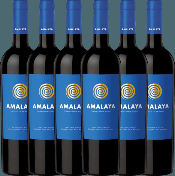 6er Vorteils-Weinpaket - Amalaya Tinto 2019 - Bodega Colomé