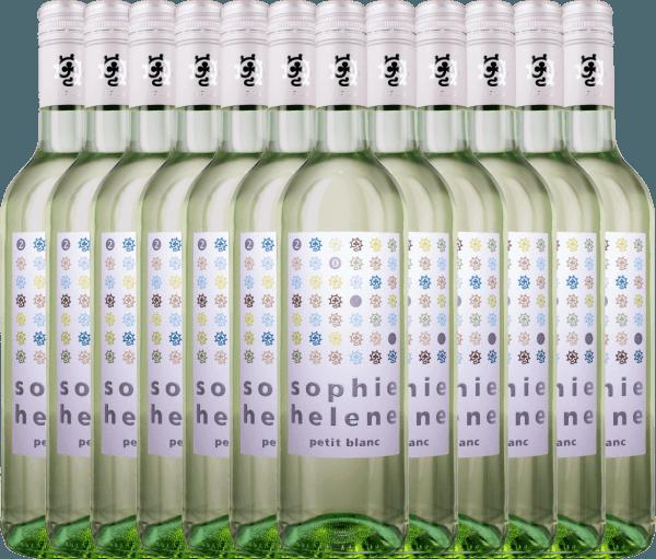 12er Vorteils-Weinpaket - Sophie Helene petit blanc 2019 - Weingut Hammel