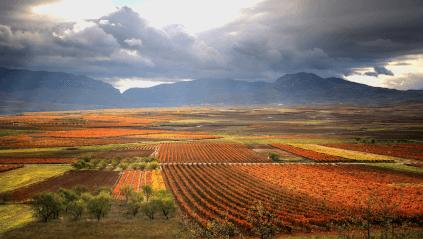 Die Rioja