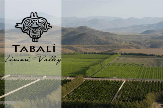 Weingut Tabali